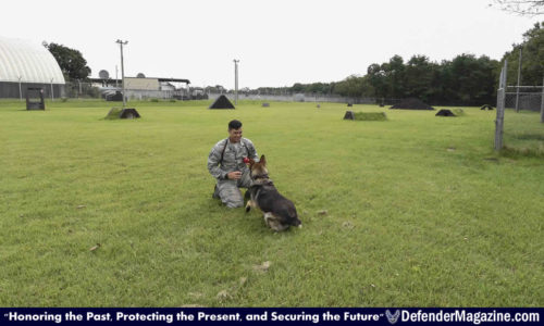 091516 Military Working Dog bites 35th SFS 02_X1200