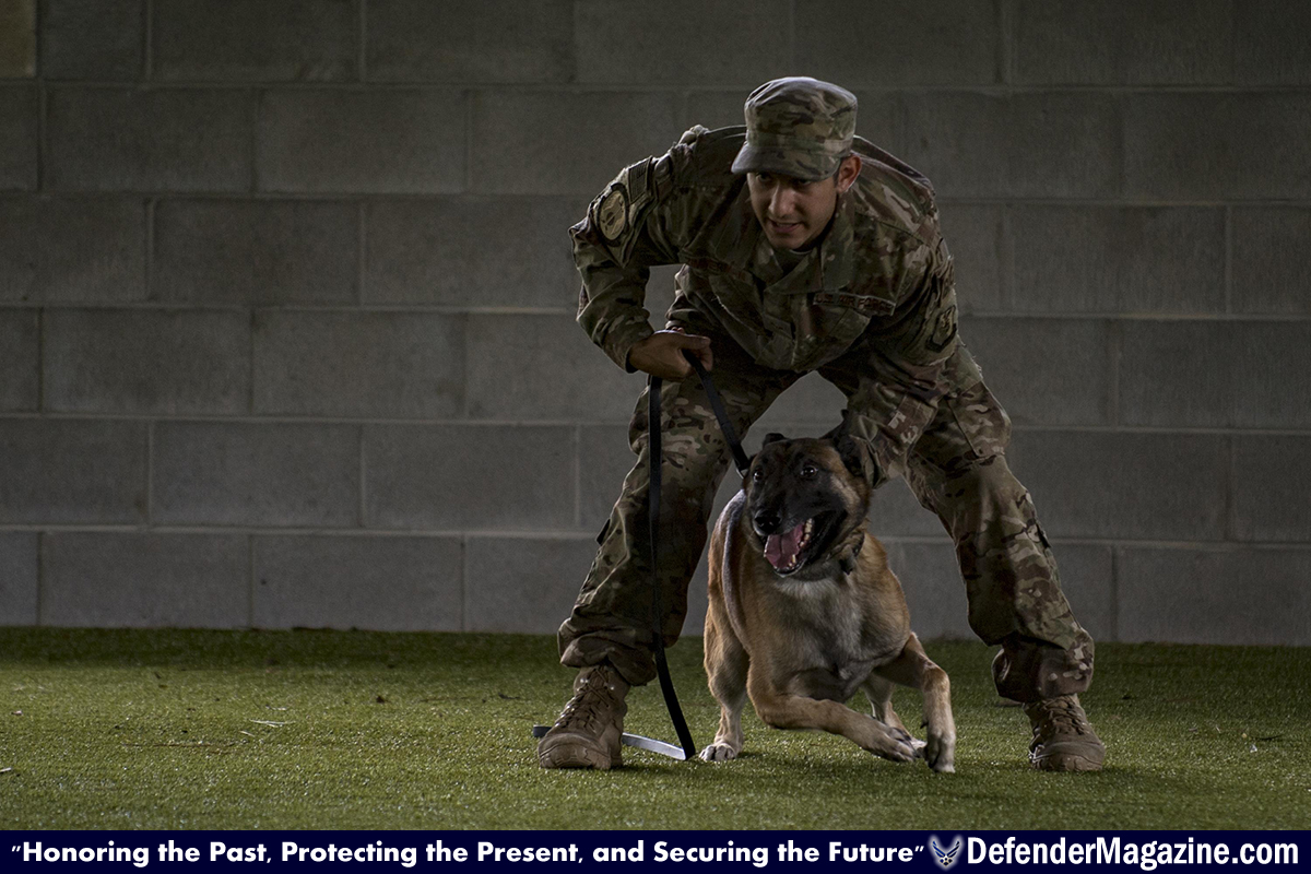 Security Forces K9