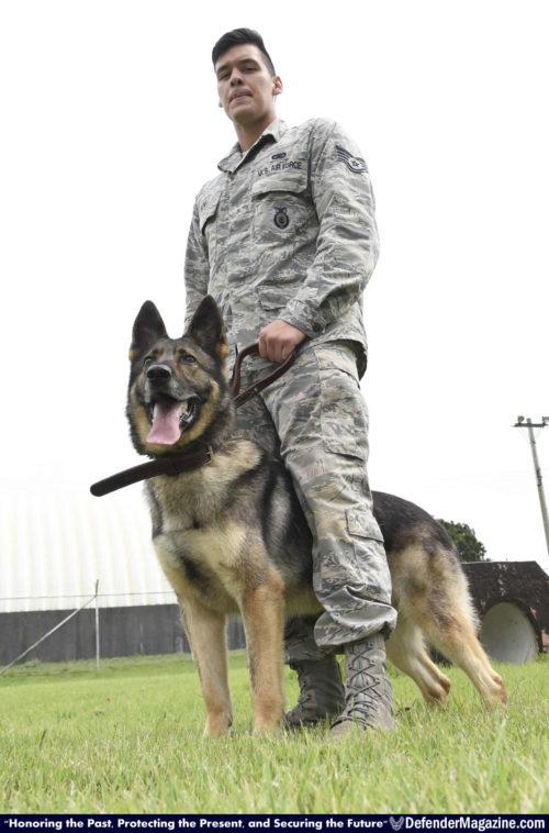 091516 Military Working Dog bites 35th SFS 05_X1200