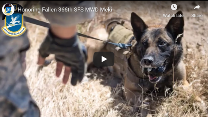 Honoring Meki, a Fallen 366th SFS MWD