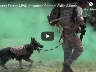 Military Working Dog Advanced Combat Skills Assessment
