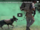 Military Working Dog Advanced Combat Skills Assessment